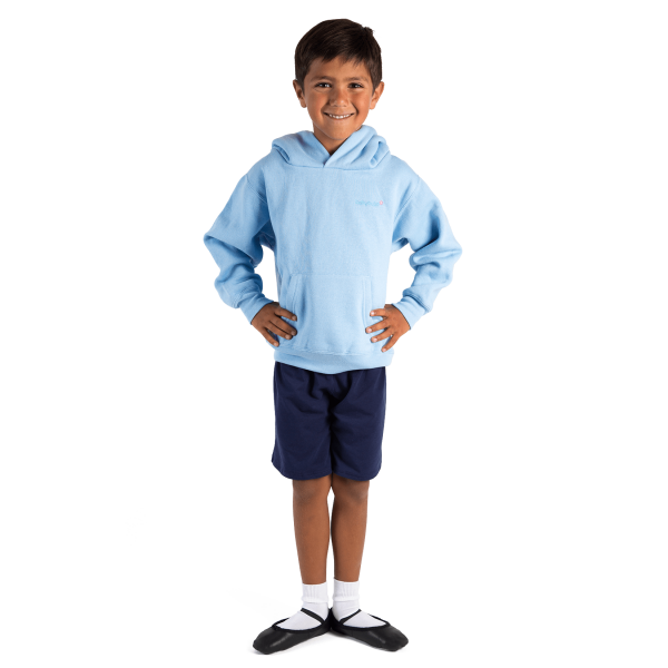 Childs overhead hooded sweatshirt- BLUE